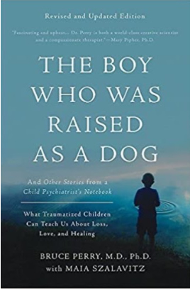 The Boy Who Was Raised as a Dog: And Other Stories from a Child Psychiatrist's Notebook -- What Traumatized Children Can Teach Us About Loss, Love, and Healing-Bruce Perry