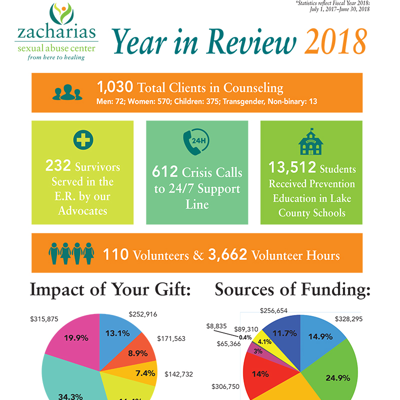2018 Year in Review-1